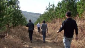Adestramento forestal 3